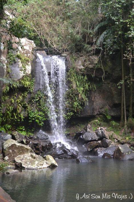 En mis paseos vi esta cascada en el Parque Nacional Tambourine.